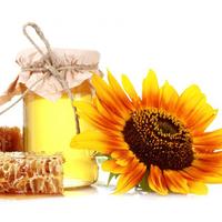 Мед соняшниковий