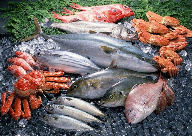 Новая азиатская площадка аукционной торговли рыбы будут построена недалеко от Владивостока